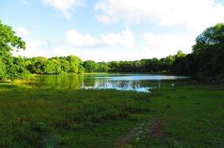 Laguna Big Pond