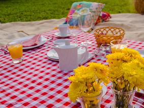 Pícnic