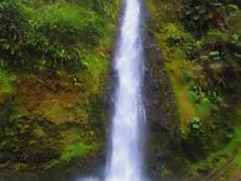 Paseo a Las Cascadas - Huéspedes