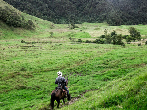 Cabalgata a las Cascadas