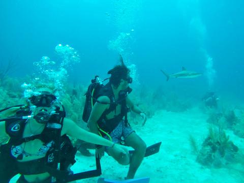 Entre Mares Dive Center