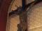 Ruta Religiosa   Cartago
