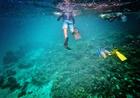 Paseo De Los 7 Colores - Fisheman Experience