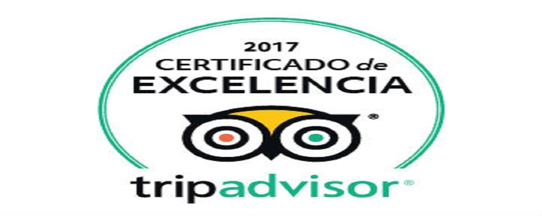 Certificado de Excelencia 2017