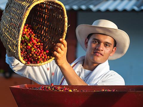 Coffee Tour La Tata