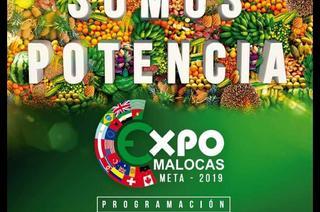 EXPO MALOCAS META 2019