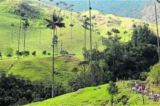 COFFEE CULTURAL LANDSCAPE: WORLD HERITAGE