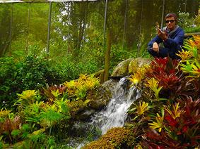 Jardín Botánico del Quindío