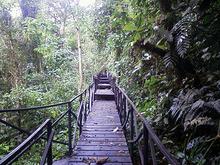 Caminata - Sendero Aguas Claras