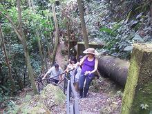 Caminata - Sendero La Esmeralda (2 Horas)