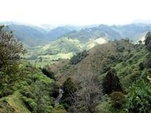 Salento - Camino Nacional Tramo Trincheras