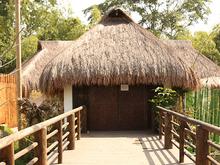 Pasaporte Ceiba
