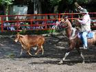 Trabajo de Llano en Tiuma Park