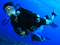 Diving   Experience For Beginners