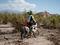 Chilo Ranch Adventure