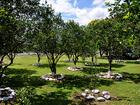 Hotel Campestre Kosta Azul - árboles