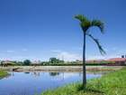 Cabañas Melivale - Lago