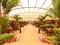 Hotel Hacaritama Colonial - Zonas verdes