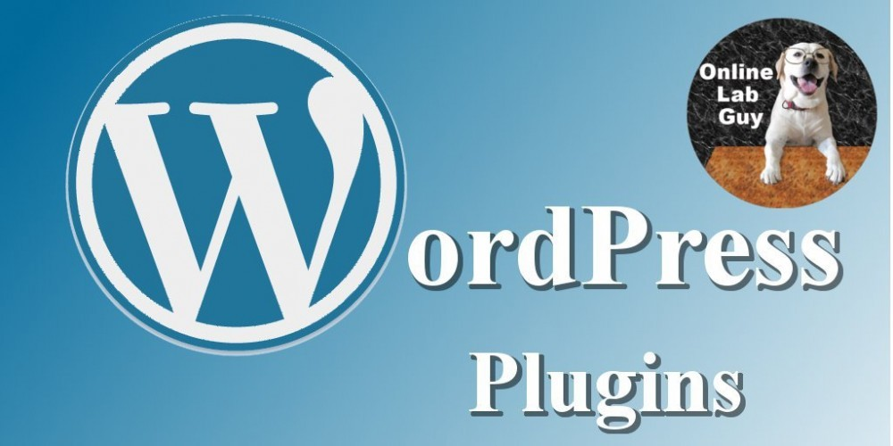 WordPress Plugins| Remove a Plugin