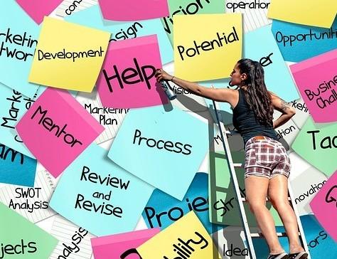Mentor, Help, Development, Potential
