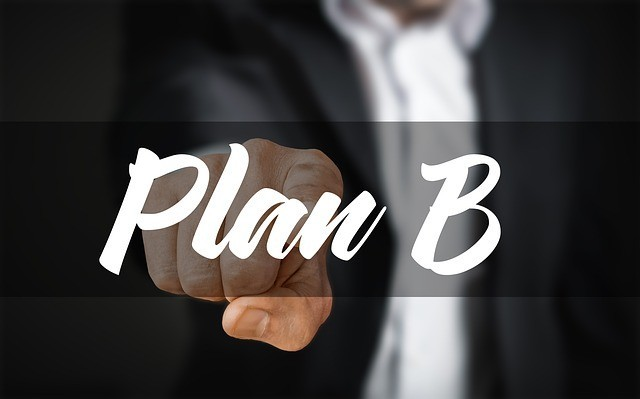 The art of plan B to find the man of your dream