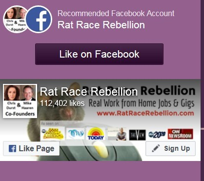 Rat Race Rebellion Review: Is it a Scam