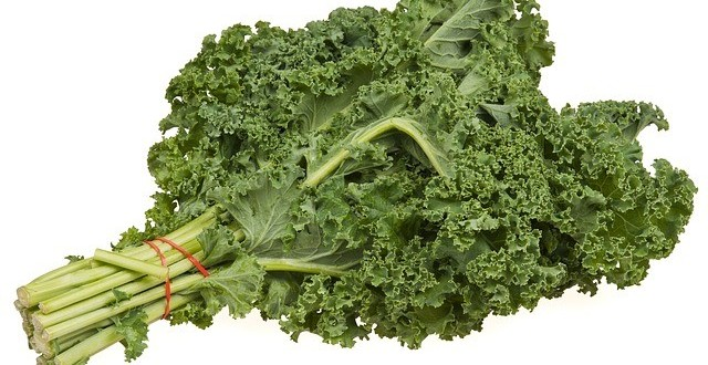 What Are The Health Benefits Of Kale