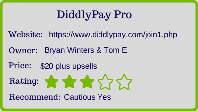 diddly pay pro review - rating
