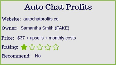 the auto chat profits