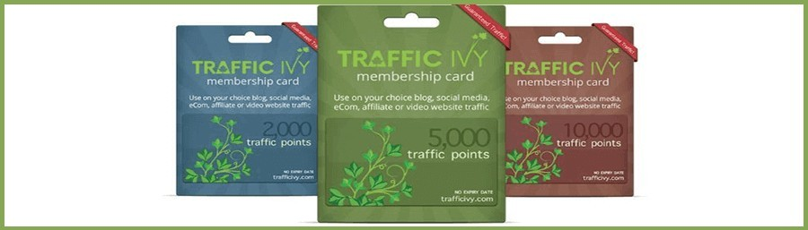 how does traffic ivy work