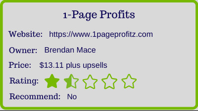 one page profits review
