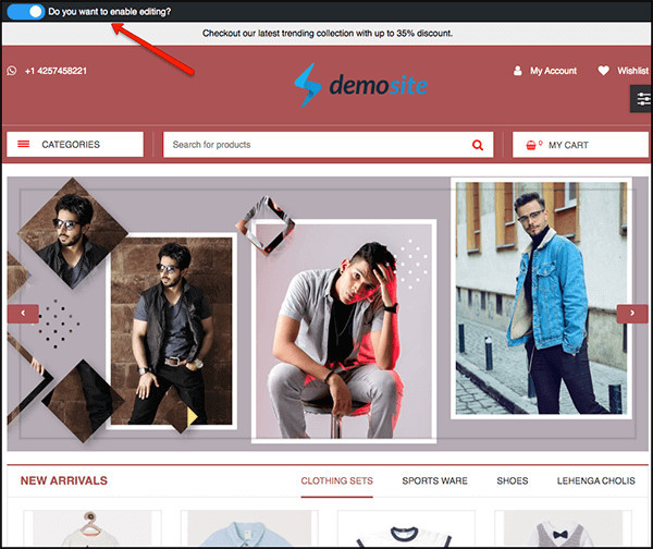 example of a demo site