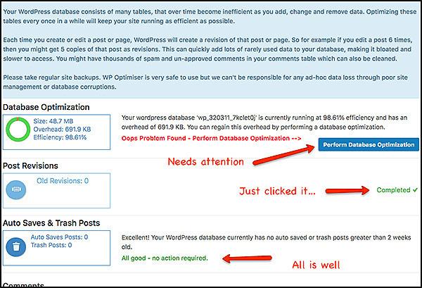 shrink wordpress database