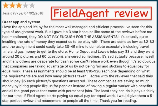 fieldagent user review