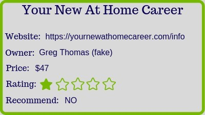 your new at home career review rating