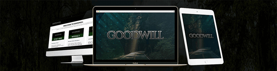 what is the goodwill review by