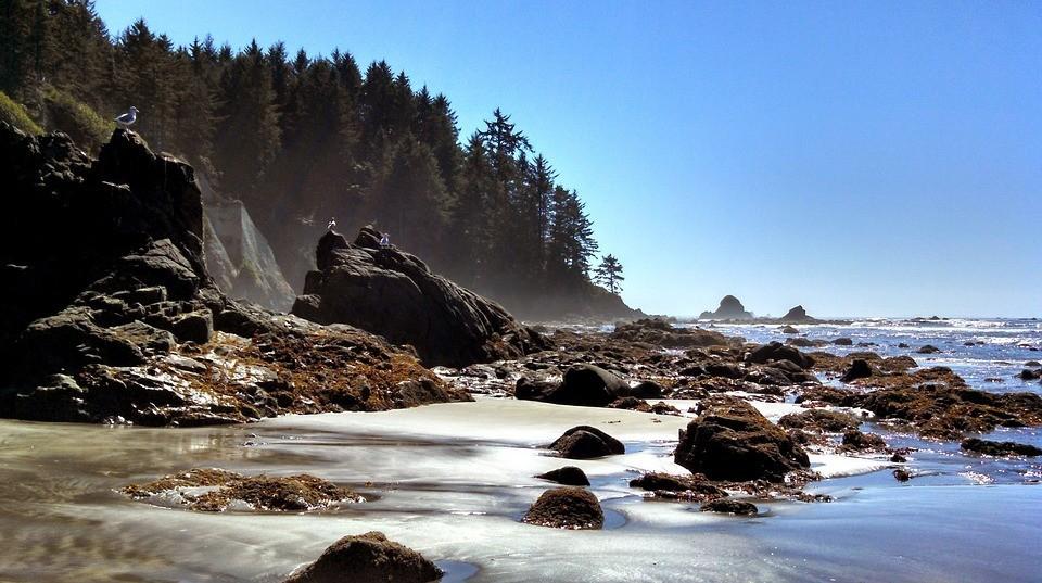 Stone Rocks Ocean Seacoast Landscape