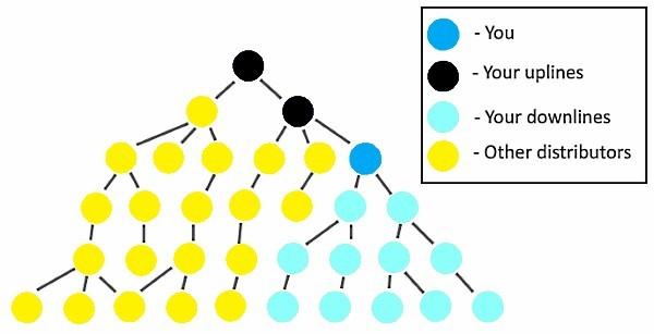 MLM Pyramid