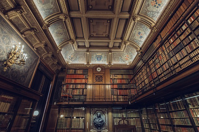 5 Reasons Why A Library Is Still a Treasure In This Google World