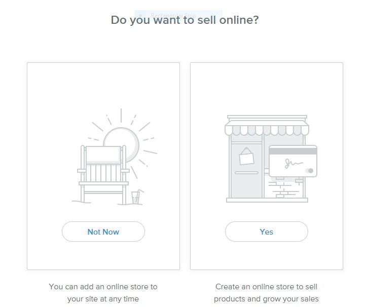 Pick-E-Commerce-or-Regular-Website