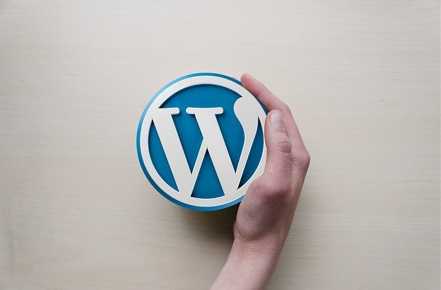 using a wordpress website