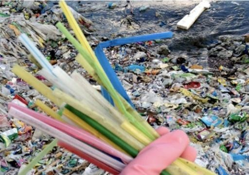 Disposable straw pollution