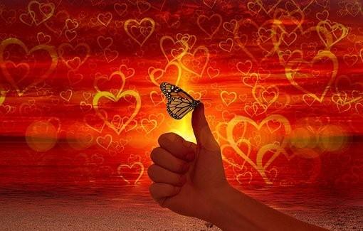 live love believe