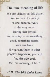 dalai lama on life