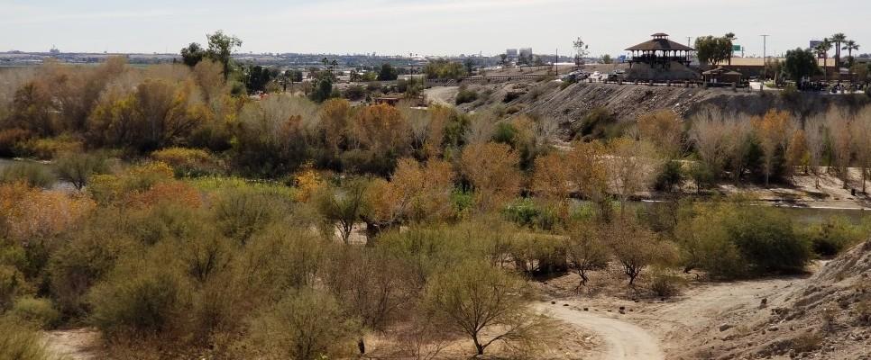 Yuma, - Arizona