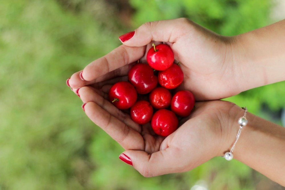 Naturelo Whole Food Multivitamin for Women Gets Its Vitamin C From Organic Acerola Cherries