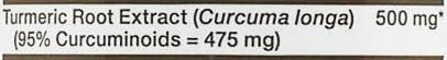 GNC Turmeric Curcumin Ingredients