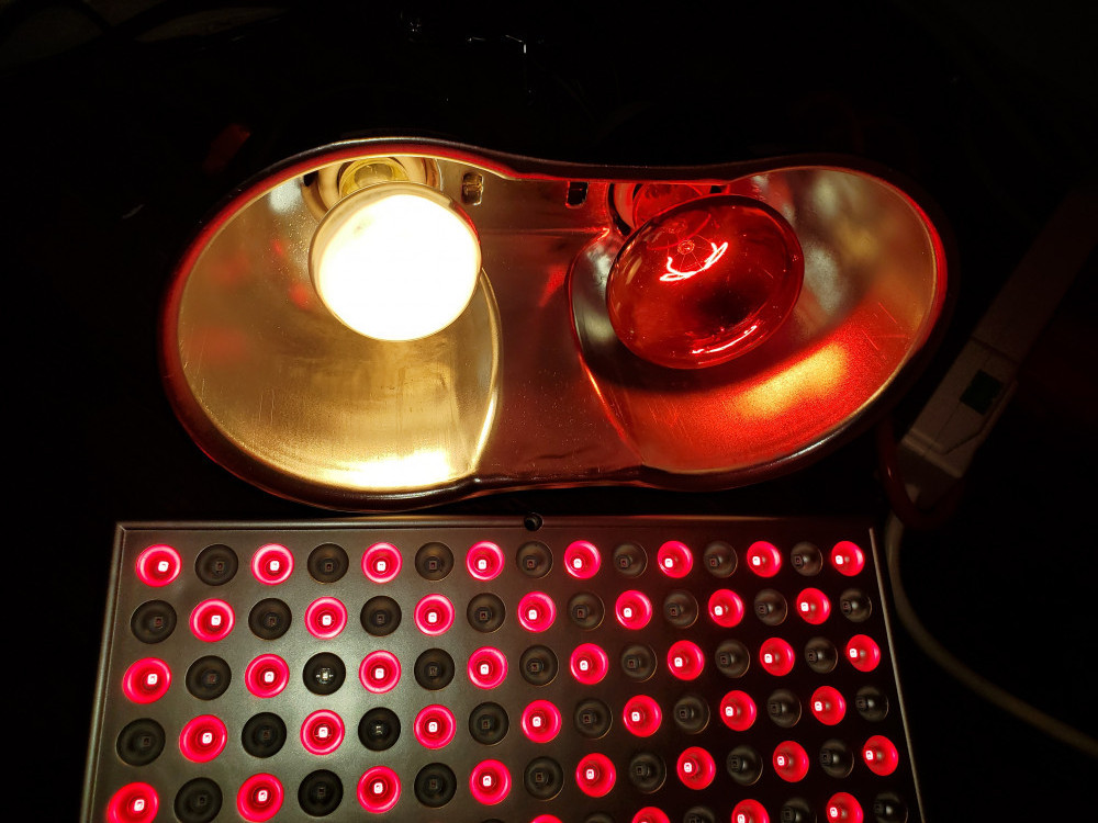 red light therapy heat lamp