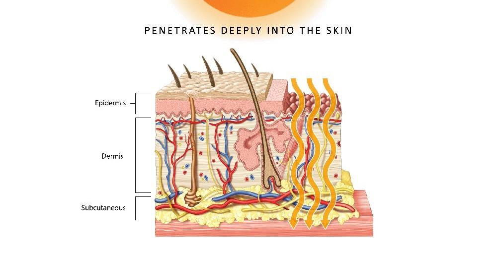 FIR waves penetrates skin
