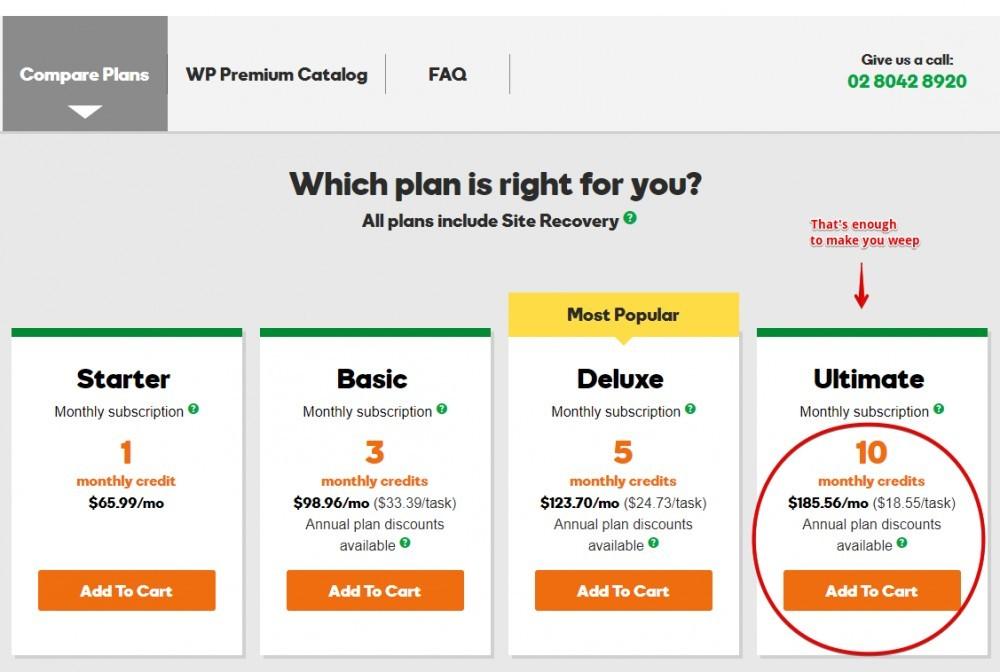 Hosted WordPress Premium Support